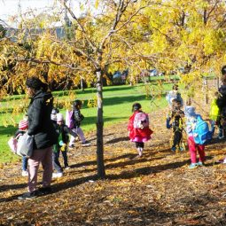 Regular park excursion
